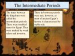 the intermediate periods