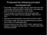 produced the following principal consequences