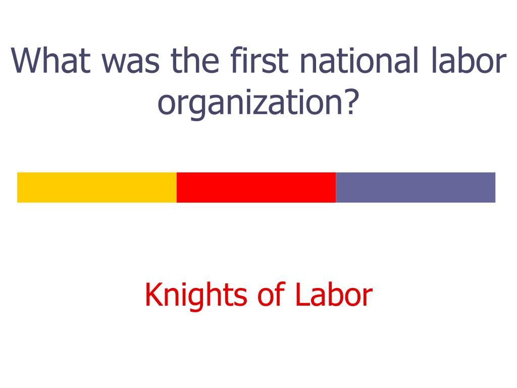 What was the first national labor organization?