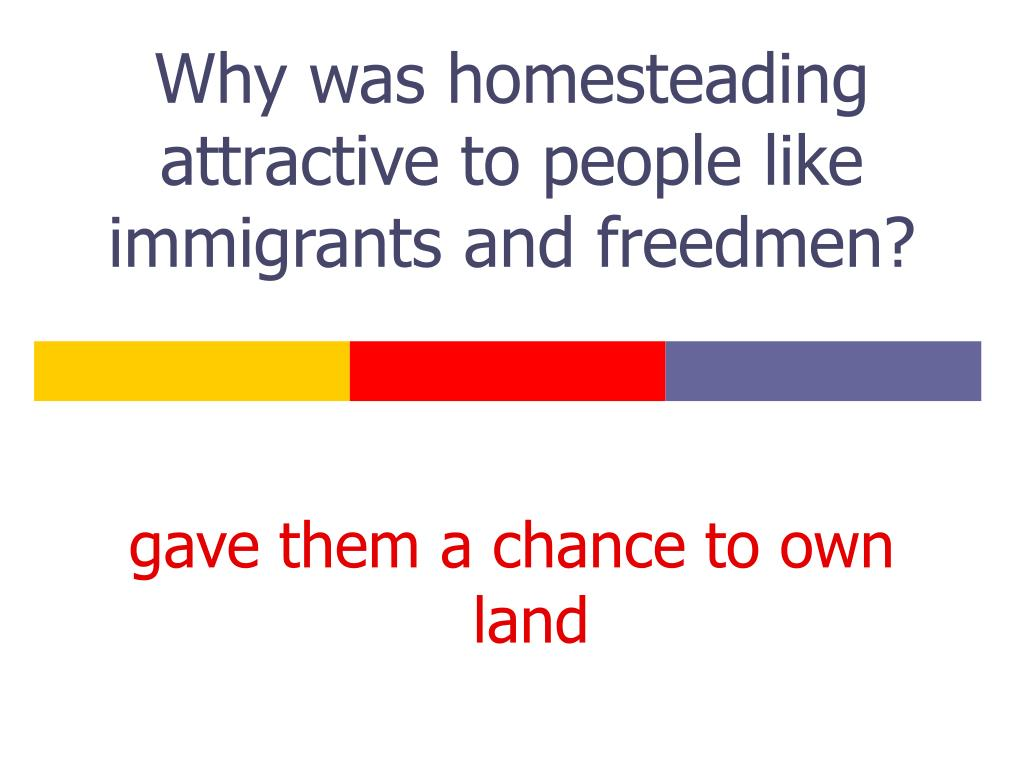 Why was homesteading attractive to people like immigrants and freedmen?