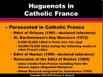 huguenots in catholic france