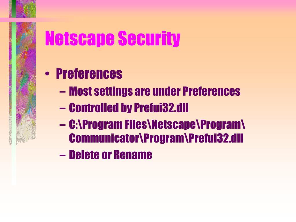 Netscape Security