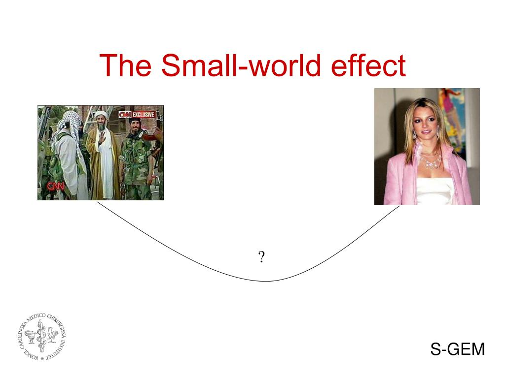 The Small-world effect