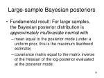 large sample bayesian posteriors
