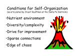 conditions for self organization as articulated by stuart kauffman at the santa fe institute