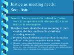 justice as meeting needs socialism
