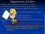 organization of labor