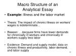 macro structure of an analytical essay13