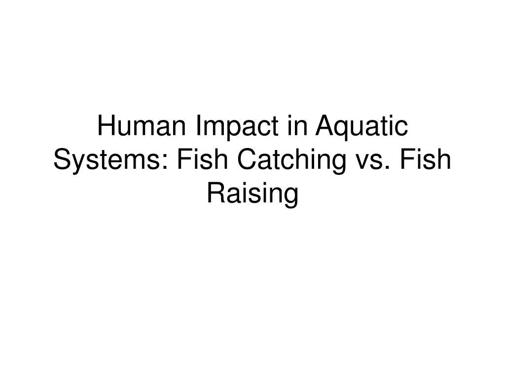 human impact in aquatic systems fish catching vs fish raising l.