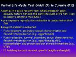partial life cycle test adult p to juvenile f1