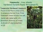 hammocks tree islands hardwood forests found throughout fl