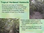 tropical hardwood hammocks