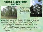 upland ecosystems high pine
