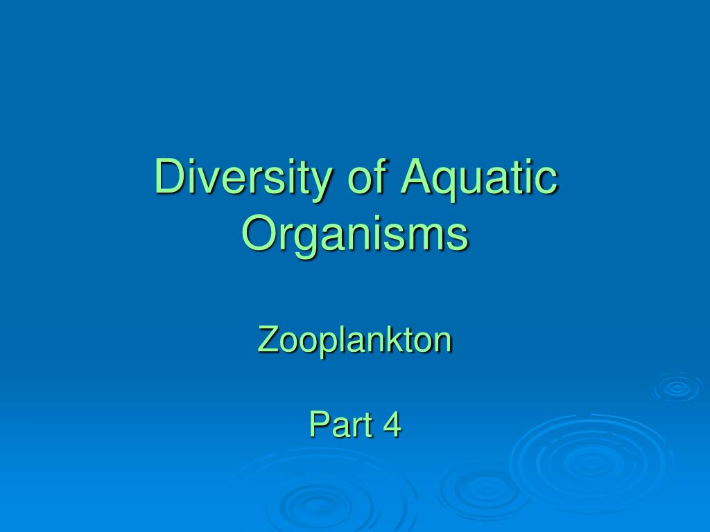 diversity of aquatic organisms zooplankton part 4 l.