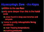abyssopelagic zone the abyss