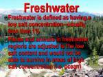 freshwater3
