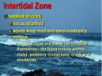 intertidal zone30
