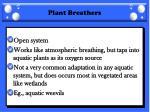 plant breathers