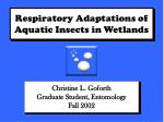 respiratory adaptations of aquatic insects in wetlands