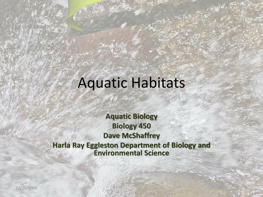 aquatic habitats l.
