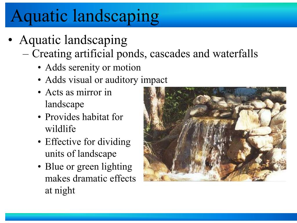 aquatic landscaping l.