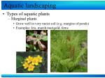 aquatic landscaping11