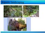 aquatic landscaping15