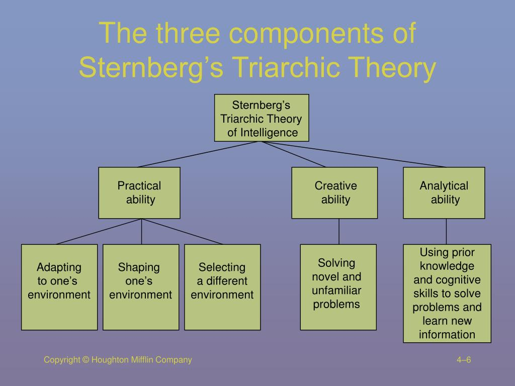 The three components of Sternberg's Triarchic Theory
