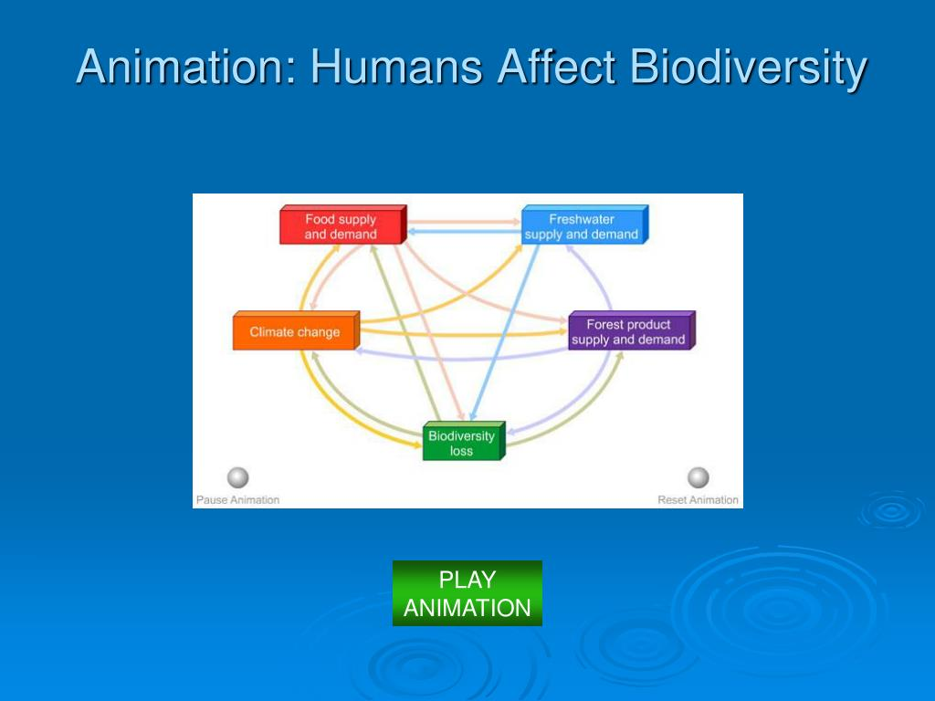 Animation: Humans Affect Biodiversity