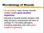 microbiology of wounds12