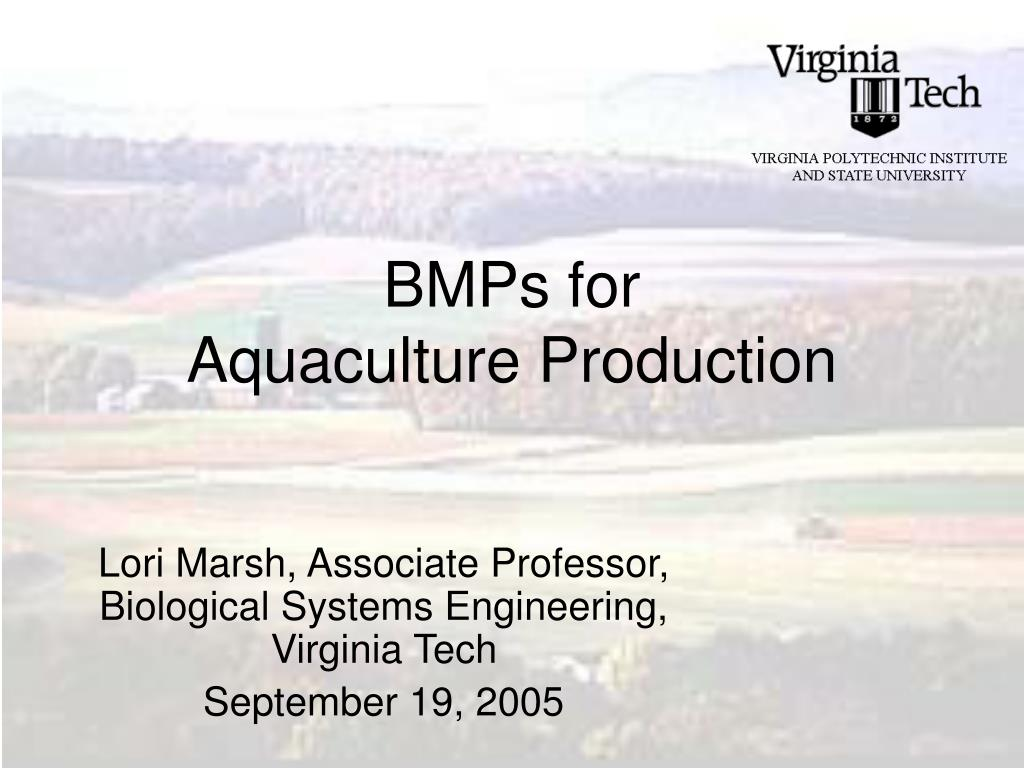 bmps for aquaculture production l.