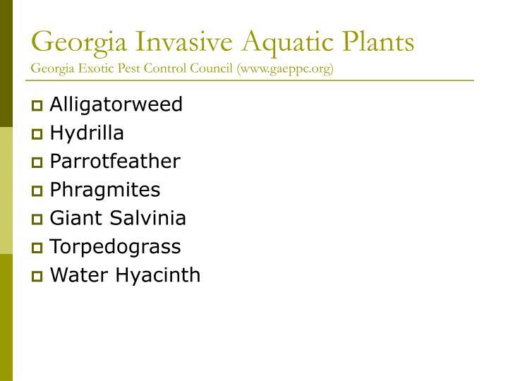 Georgia invasive aquatic plants georgia exotic pest control council www gaeppc org
