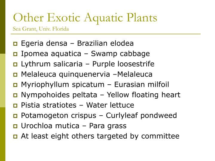Other exotic aquatic plants sea grant univ florida