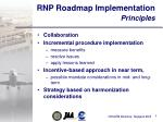 rnp roadmap implementation principles