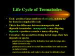 life cycle of trematodes50