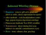 salmonid whirling disease30
