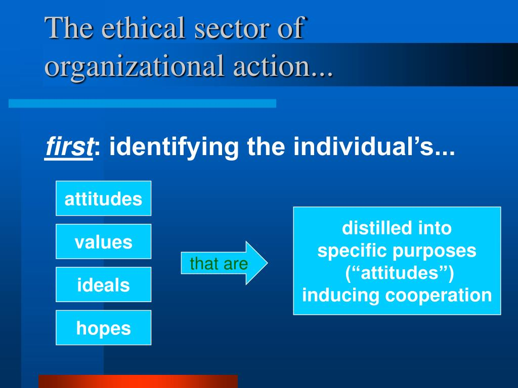 The ethical sector of organizational action...