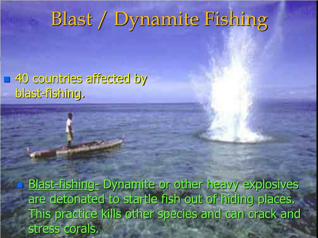 Blast / Dynamite Fishing