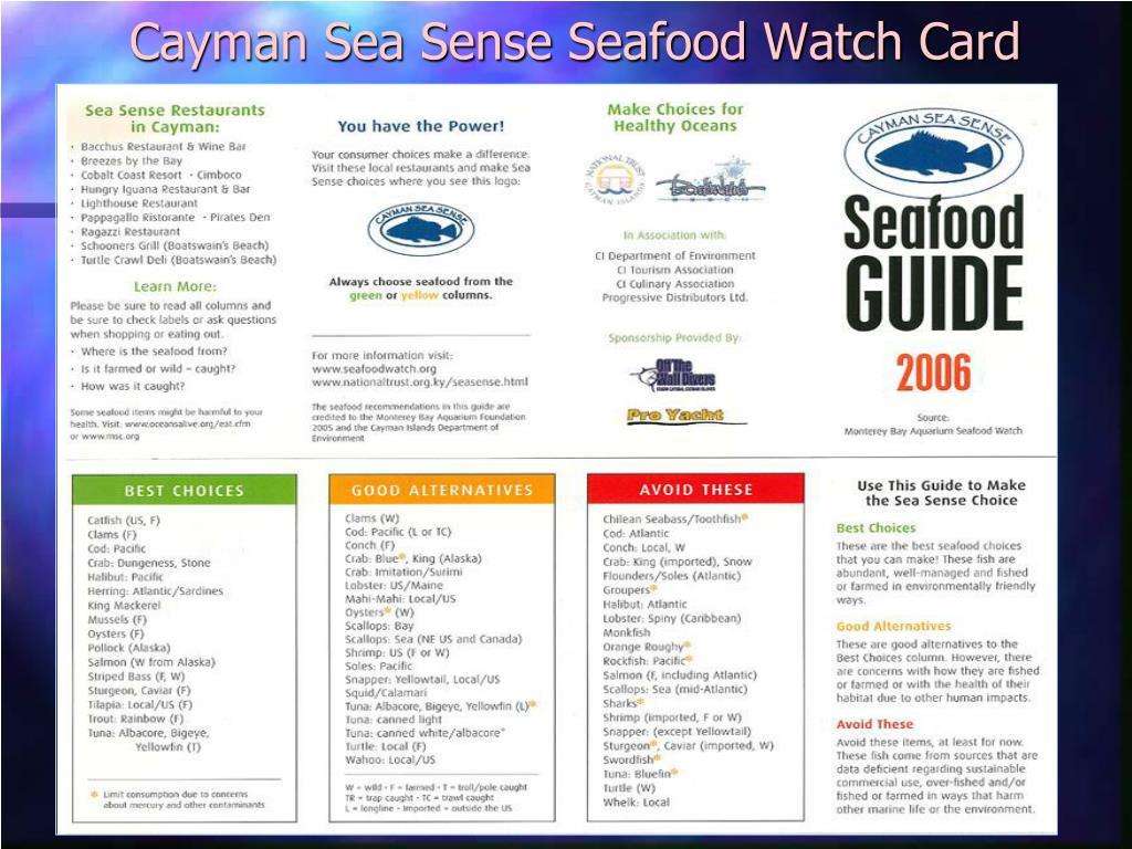 Cayman Sea Sense Seafood Watch Card