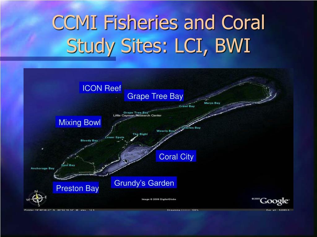 CCMI Fisheries