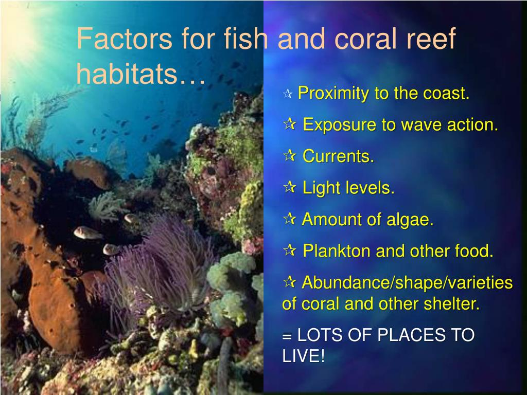 Factors for fish and coral reef habitats…
