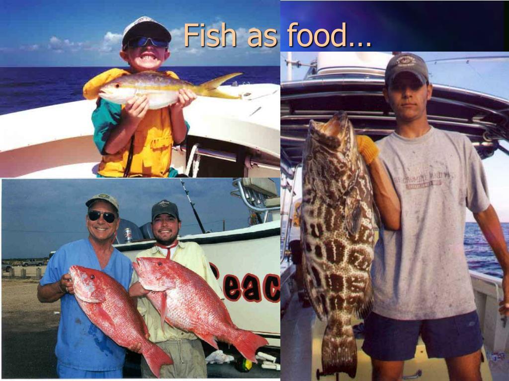 Fish as food…