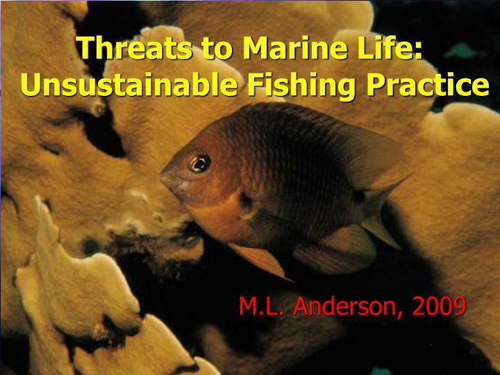 Threats to marine life unsustainable fishing practice