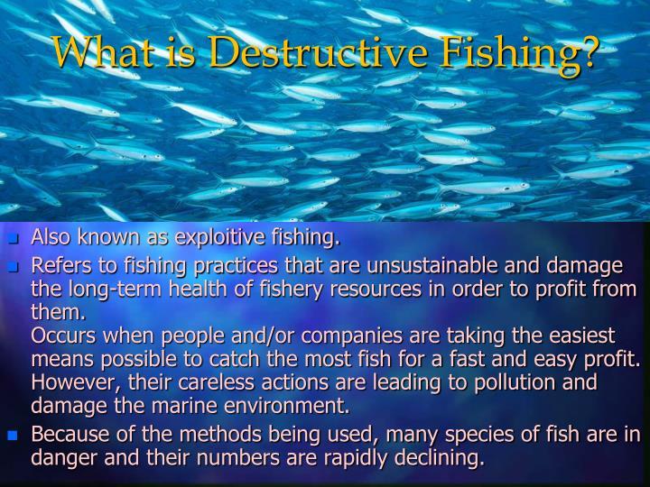 What is destructive fishing