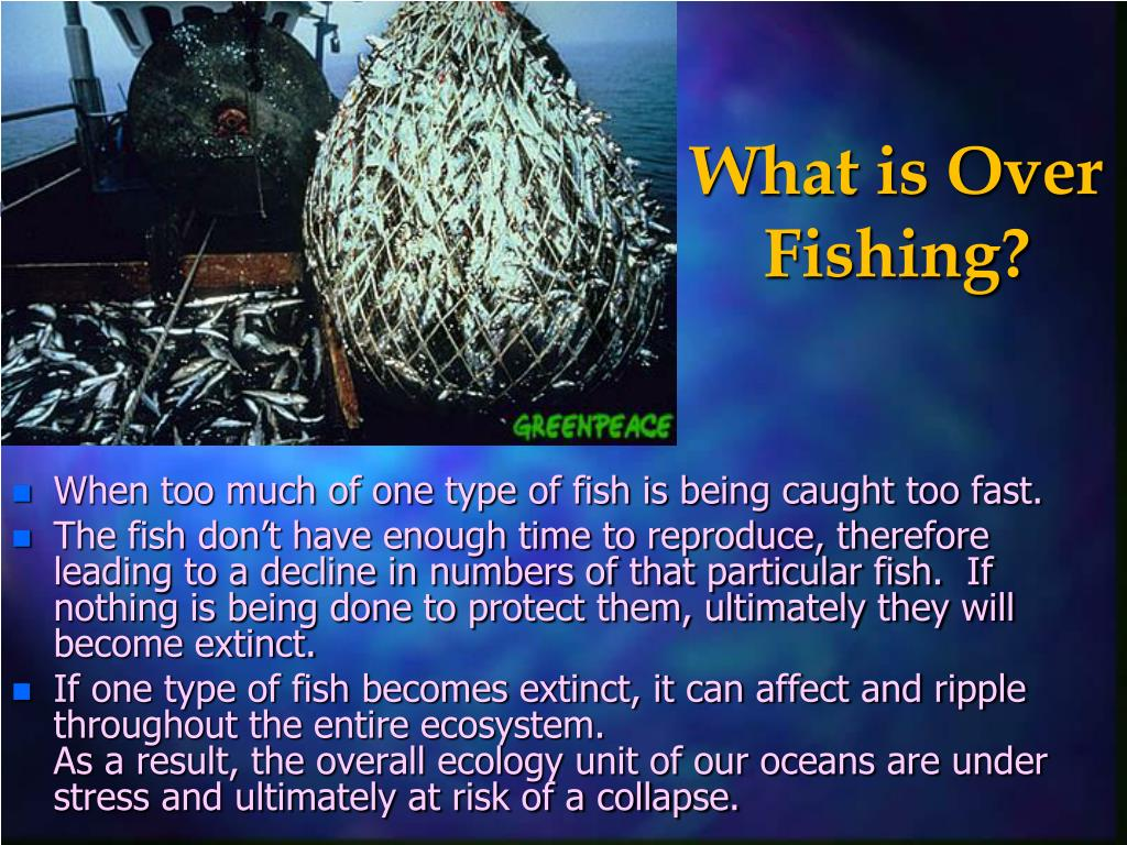 What is Over Fishing?