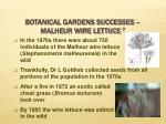 botanical gardens successes malheur wire lettuce 7