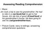 assessing reading comprehension14