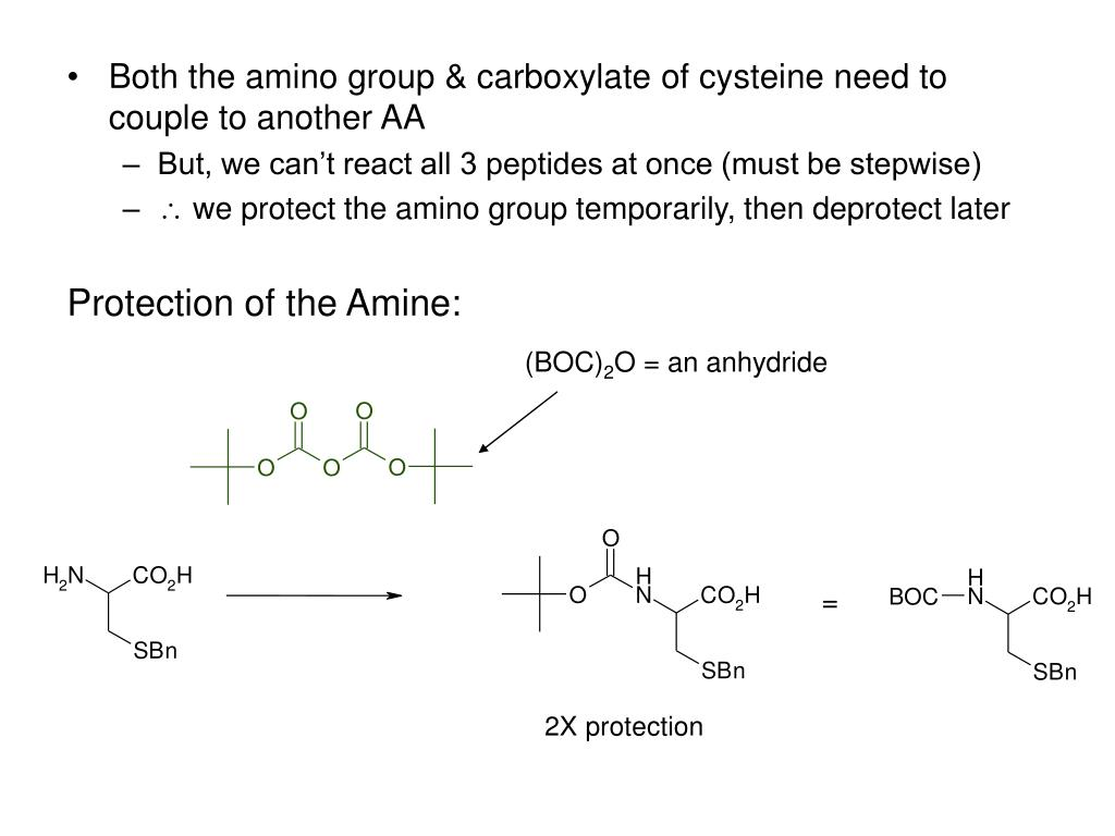 Both the amino group & carboxylate of cysteine need to couple to another AA