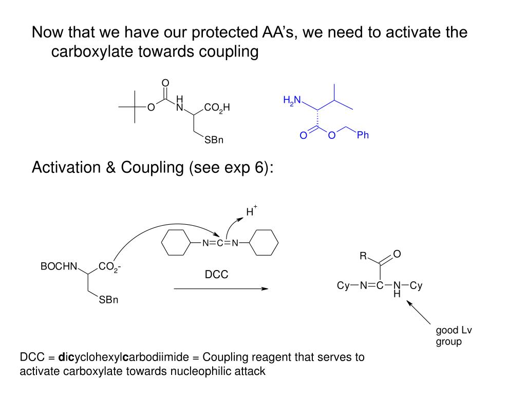 Now that we have our protected AA's, we need to activate the carboxylate towards coupling