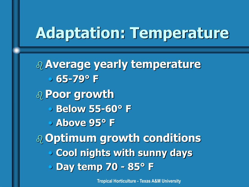 Adaptation: Temperature